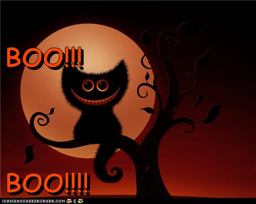 BOO!!!                                                                                                                  BOO!!!!