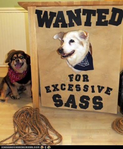 Halloween Pet Parade: Deputy Dog and The Outlaw