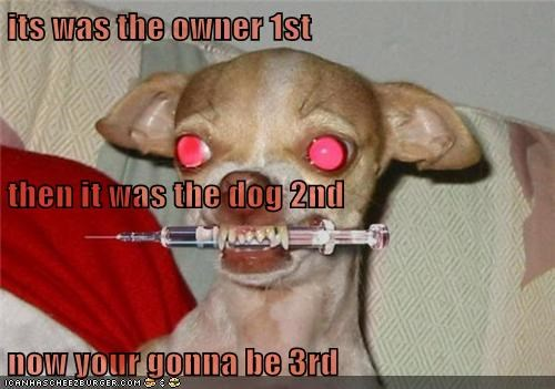 its was the owner 1st then it was the dog 2nd now your gonna be 3rd