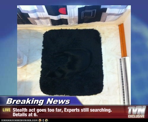 Breaking News - Stealth act goes too far, Experts still searching. Details at 6.