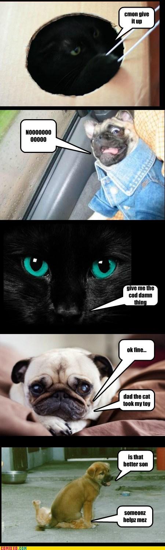 the cat pt.2