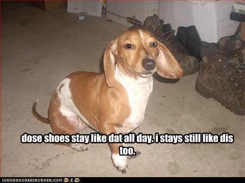 dose shoes stay like dat all day. i stays still like dis too.