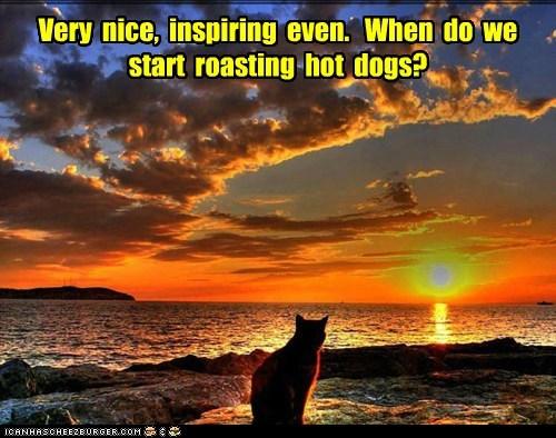 Very  nice,  inspiring  even.   When  do  we  start  roasting  hot  dogs?