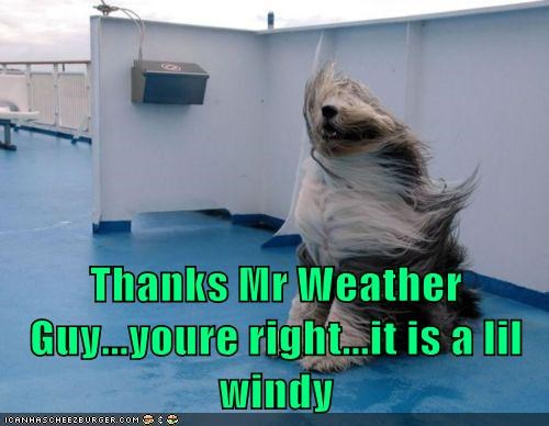 Thanks Mr Weather Guy...youre right...it is a lil windy