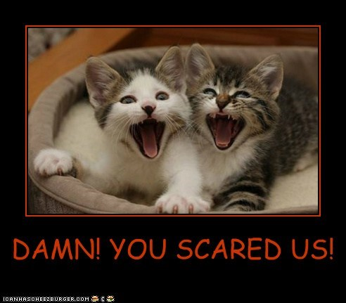 DAMN! YOU SCARED US!