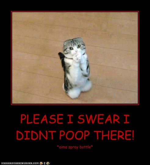 PLEASE I SWEAR I DIDNT POOP THERE!