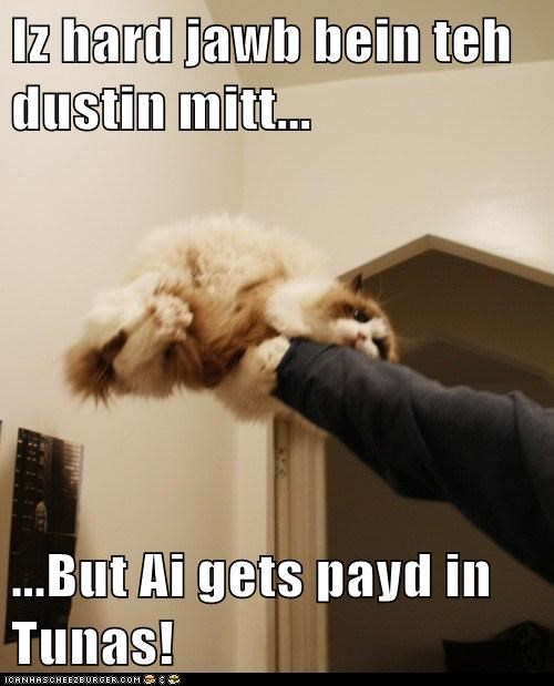 Iz hard jawb bein teh dustin mitt...  ...But Ai gets payd in Tunas!