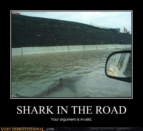 SHARK IN THE ROAD
