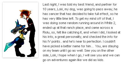 A Fan's Story of a Lost Partner...