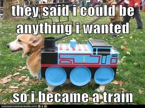 they said i could be anything i wanted  so i became a train