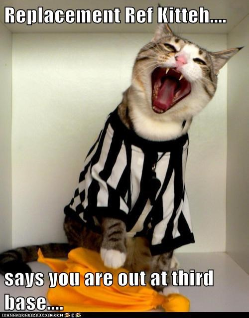 Replacement Ref Kitteh....  says you are out at third base....