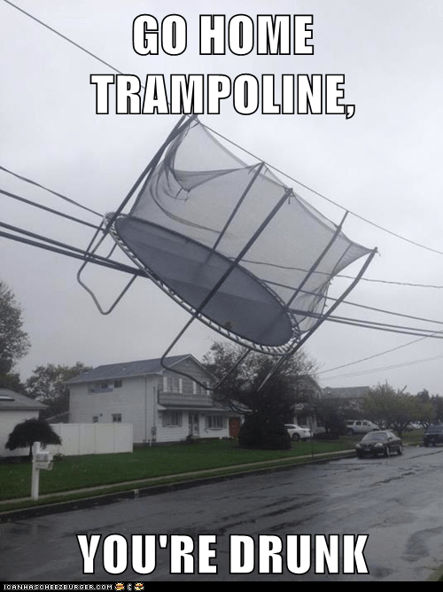 GO HOME TRAMPOLINE,  YOU'RE DRUNK