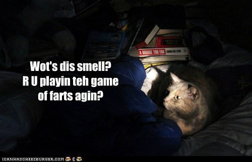 Wot's dis smell?  R U playin teh game of farts agin?