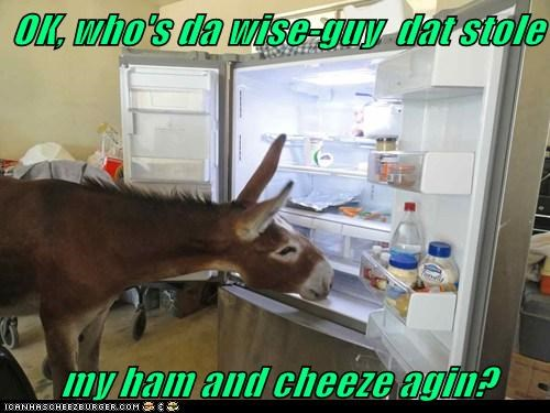 OK, who's da wise-guy  dat stole           my ham and cheeze agin?