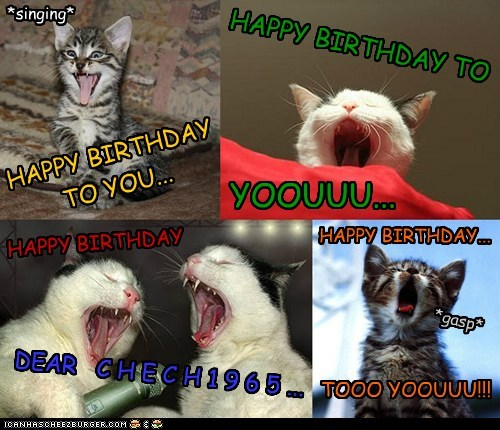 Happy Birthday Cheezfriend! I wish you all the best. Here's your purrsonal MEOW-A-GRAM :)