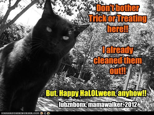 Happy HaLOLween, Cheezpeeps!!