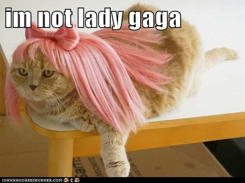 im not lady gaga