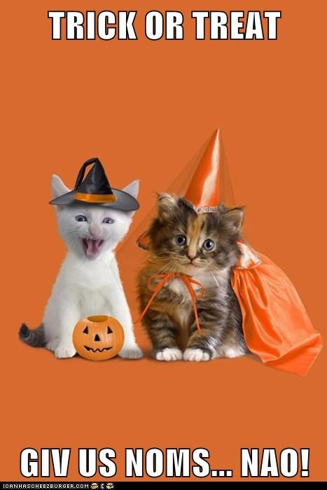 TRICK OR TREAT  GIV US NOMS... NAO!