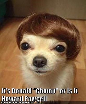 "It's Donald ""Chomp"" or is it Howard Pawcell"