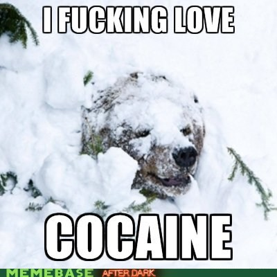 I f**king love cocaine