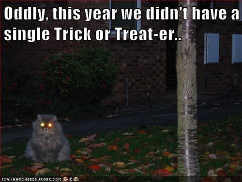 Oddly, this year we didn't have a single Trick or Treat-er..
