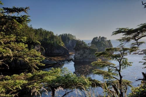Empty Compliments Will Get You Nowhere in Cape Flattery, Washington