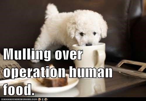 Mulling over operation human food.