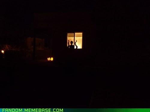 Last House on the Block at Halloween