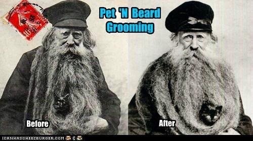 cat,man,beard,pet