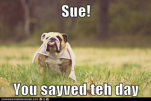 Sue!   You sayved teh day
