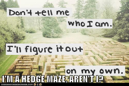 hedge maze,hipster,who am i