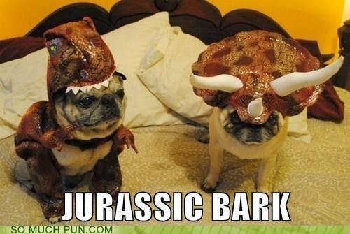 dogs,dinosaur,similar sounding,costume,bark,jurassic park,dinosaurs