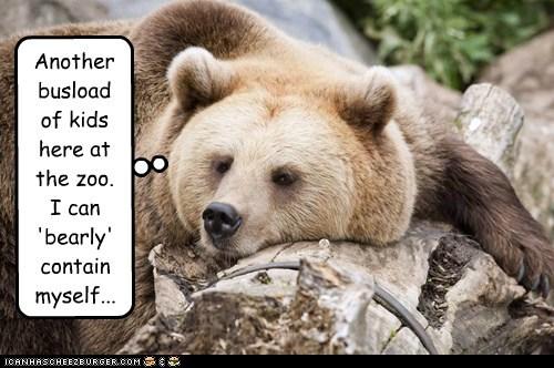 barely,pun,kids,zoo,bear,bored