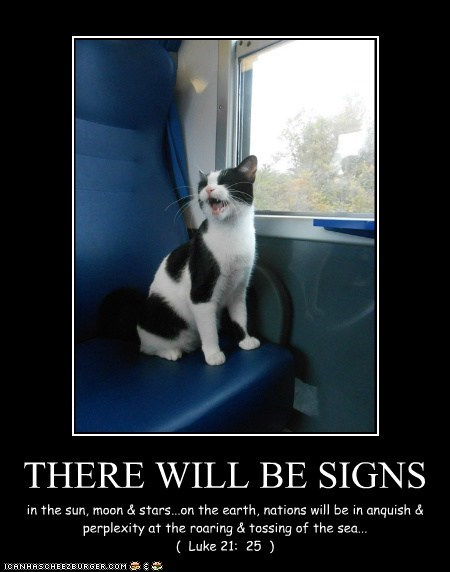 THERE WILL BE SIGNS