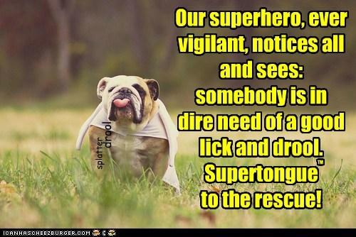 cape,dogs,bulldog,drool,superhero