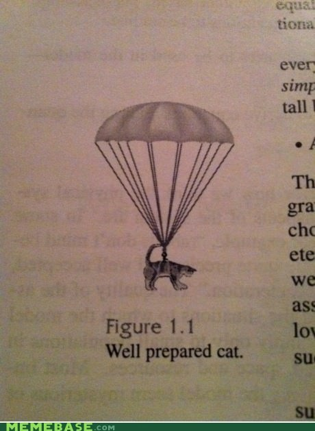 cat,well prepared,always land on his feet,parachute,textbook