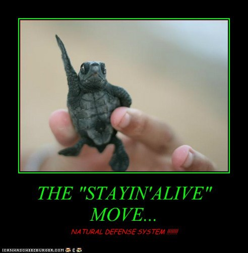 "THE ""STAYIN'ALIVE"" MOVE..."