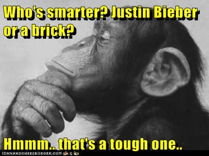 Who's smarter? Justin Bieber or a brick?  Hmmm.. that's a tough one..