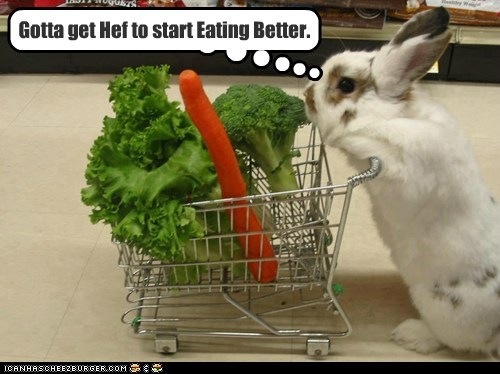 Bunny Diet Advice