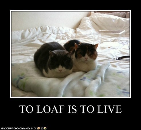TO LOAF IS TO LIVE