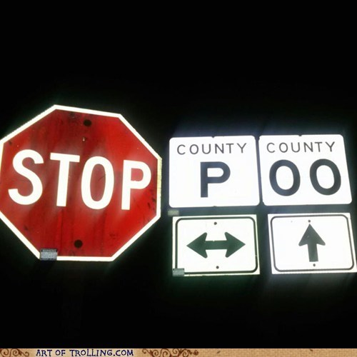 sign,we-cant-stop-here,IRL,stop sign,poo