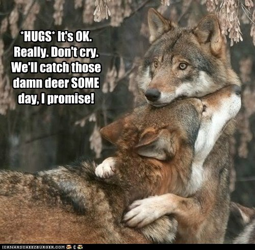*HUGS* It's OK. Really. Don't cry. We'll catch those damn deer SOME day, I promise!