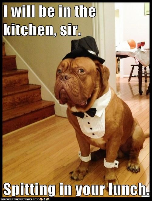 I will be in the kitchen, sir.  Spitting in your lunch.
