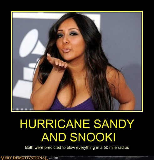 HURRICANE SANDY  AND SNOOKI