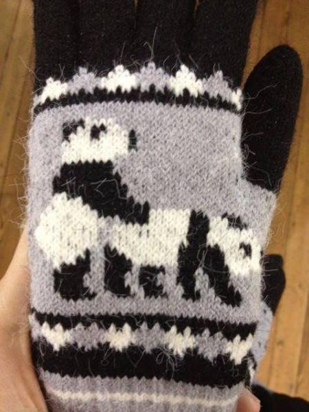 gloves,panda,doing it