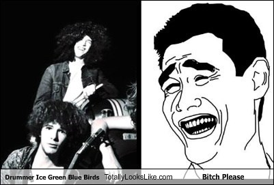 Drummer Ice Green Blue Birds Totally Looks Like Bitch Please