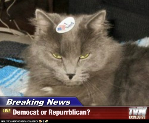 Breaking News - Democat or Repurrblican?