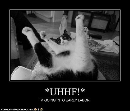 *UHHF!*