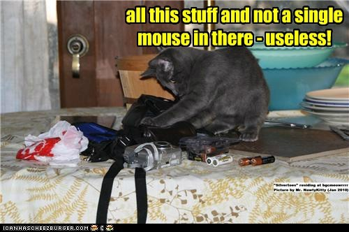 all this stuff and not a single mouse in there - useless!