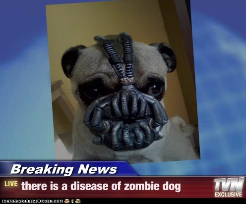 Breaking News - there is a disease of zombie dog